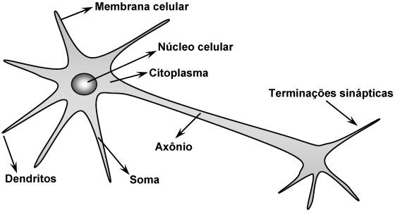 Fig#1.1_RNA