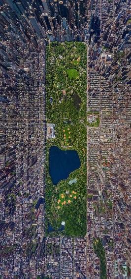 Central Park - Nova York - Foto: Sergey Semenov