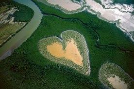 Manguezais em Nova Caledónia - Foto: Yann Arthus Bertrand