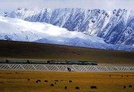 Ferrovia_Qinghai-Tibet-a_ferrovia_mais_alta_do_mundo