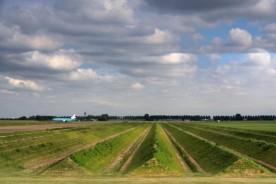 Buitenschot-Land-Art-Park-Paul-de-Kort-HNS-Landschapsarchitecten-2-728x486